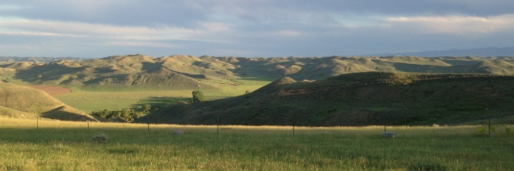 A view toward the Piney Pivots