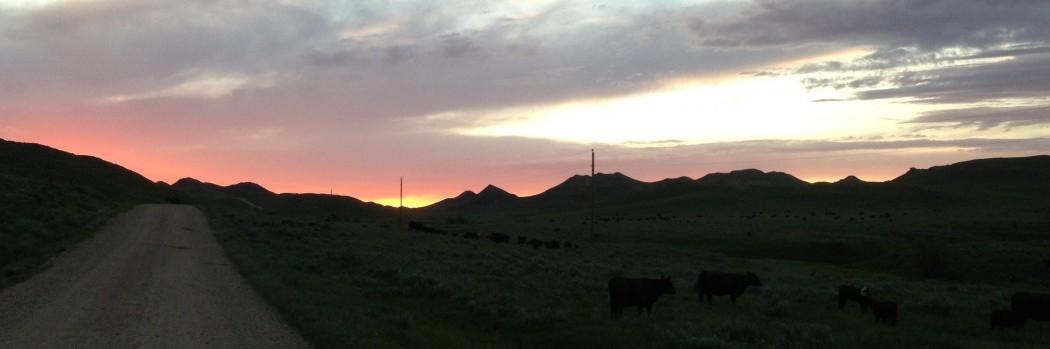 Sunset over Upper Coal Creek pasture