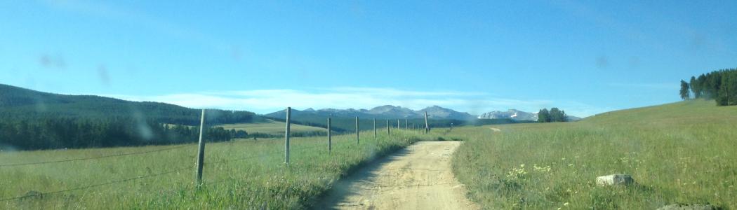 Blue bird sky over the summer rangelands